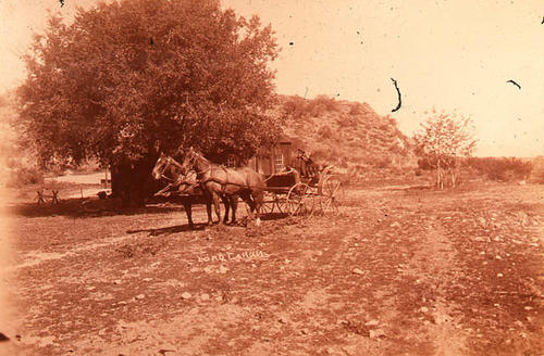 This slide is of two horses and a buggy in front of an old farmhouse.    SLIDE CONDITION:  This picture has a slight reddish cast due to film deterioration.