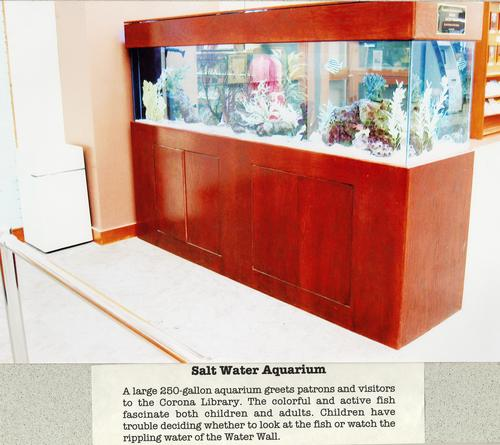 Photograph of the salt water aquarium donated by the Friends. The 25-gallon aquarium was originally located in the lobby next to the Circulation Desk. It was later moved to entrance of the hallway leading to the Children's Room.