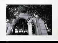 Photo - 2004 - Corona Civic Center - Columns with trees
