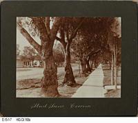 Photo - 1920 - Victoria Avenue - Corona