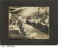 Photo - 1914 - Special Event - Lemon Men's Field Day