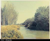 Photo - Undated - Santa Ana River - Prado Park