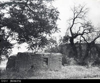 Photo - Undated Photo - Cota Adobe