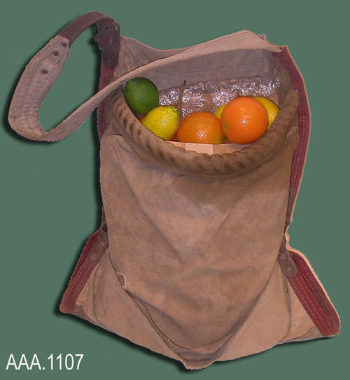 "This artifact is a canvas bag used for citrus picking.  The artificial fruit displayed in the bag shows how the bag would look when filled. This bag measures 32"" in length and 16"" width."