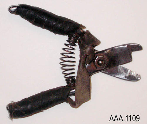 "This artifact is a pair of fruit clippers.  The handles are leather wrapped.  These clippers measure 5"" in length and 1 3/4"" in width."