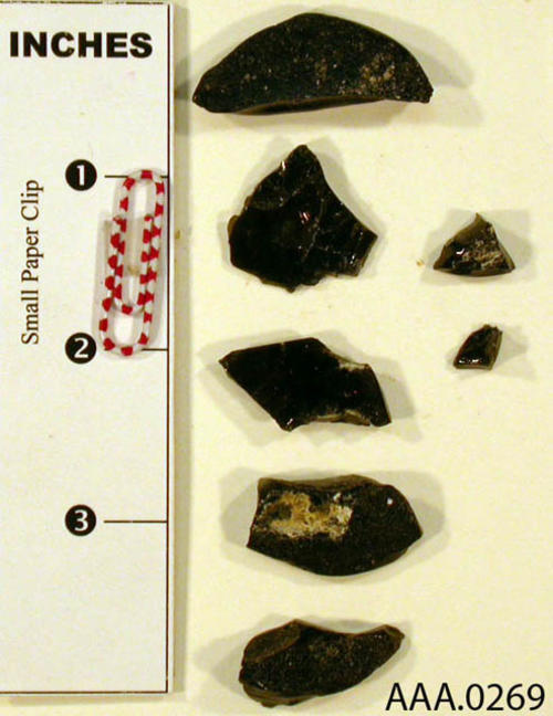 This artifact is a collection of seven small pieces of obsidian.