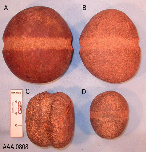"This artifact collection consists of four, large, grooved stones used as net weights possibly from Arizona.  Weight ""A"" measures 6"" high, 15"" circumference; ""B"" 6"" high, 13"" circumference; ""C"" 3.25"" high, 13"" circumference; ""D"" 3.5"", 9"" circumference."