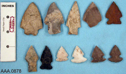This artifact collection consists of eleven arrowheads.  Their age and source is unknown.
