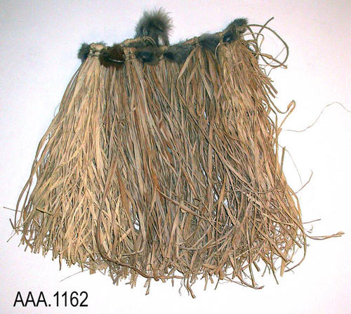 This artifact is a small native American grass skirt with tuffs of fur around the waistband.