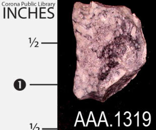 "This artifact is a Native American stone tool.  It measures 1""(W), 1 3/16"" (H), and 3/8"" (Thickness)."