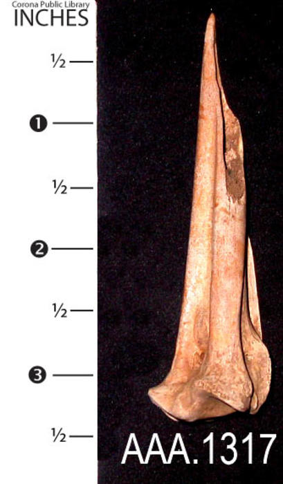 "This artifact is a Native American bone awl.  It measures 3 1/4"" in length."