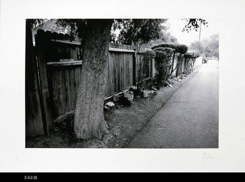 "This BW picture is part of a series of unbound 38 BW photographs taken by Corona photographer Fritz Nicoll.  Most of the photographs feature residences in Corona.  Four in the series are of the Corona Civic Center, and five are untitled photographs. This photograph is an untitled picture of an alley. - MEASUREMENTS:  11 5/8"" x 16 1/2"" - CONDITION:  Excellent -COPIES 1 SET."
