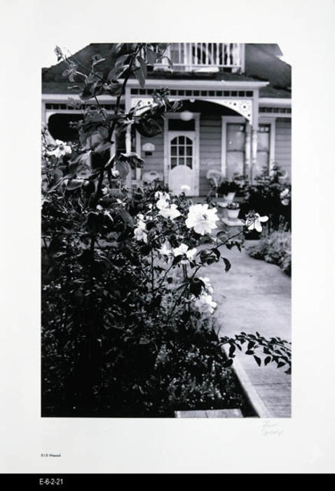 "This BW picture is part of a series of unbound 38 BW photographs taken by Corona photographer Fritz Nicoll.  Most of the photographs feature residences in Corona.  Four in the series are of the Corona Civic Center, and five are untitled photographs. This photograph is of a residence at 818 Howard.  This picture shows the roses on the property. - MEASUREMENTS:  11 5/8"" x 16 1/2"" - CONDITION:  Excellent -COPIES 1 SET."