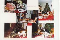 Cats and Christmas Dinner