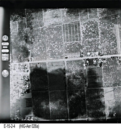 "This is an aerial view of Corona showing Main St. from Francis to Citron. - MEASUREMENTS:  10 1/4"" x 10 1/4"" - CONDITION:  This photo is in good condition. This photograph is in a protective sleeve. - COPIES:  1. - NEGATIVE INFORMATION:  # ON019"