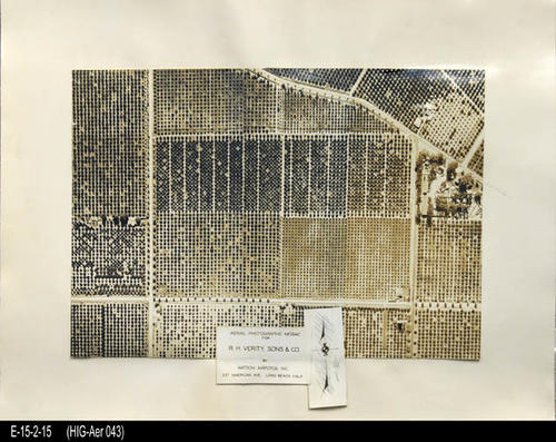 "This is a matt mounted aerial view of a Citrus Grove in Corona, Ca.  The possible location is around Ontario, Rimpau, Temescal, and California. - MEASUREMENTS:  MATT: 11 3/"" x 15 1/4"" - PHOTO:  8"" x 11 1/4"" - CONDITION:  This photo is in good condition. This photograph is in a protective sleeve. - COPIES:  1"
