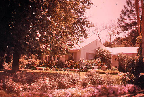 This slide is of an unidentified Corona residence.  Slide shows the home front and yard.  It was taken during April 1972.  - SLIDE CONDITION:  Good. The slide image is clearly visible; however, the color has deteriorated.