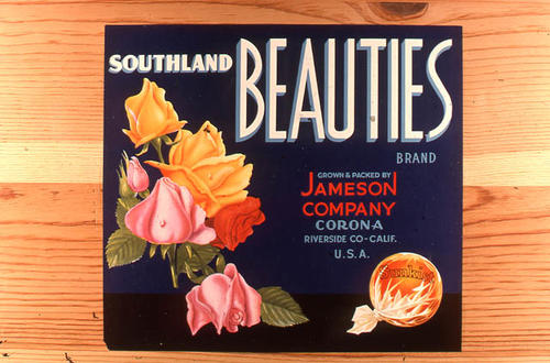 "This slide is of the ""Southland Beauties"" brand citrus label. Packed and grown by Jameson - Corona (Riverside County), California.  This label is not the same as ART-0026. SLIDE CONDITION:  Good."