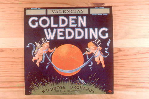 "This slide is of the ""Golden Wedding"" brand citrus label.  This orange product is from the Wildrose Orchards - Corona California.  - SLIDE CONDITION:  Good."