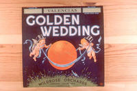 "Citrus label ""Golden Wedding"" brand oranges - Wildrose Orchards - Corona, California..."