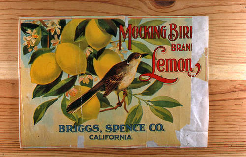 "This slide is of the ""Mocking Bird"" brand.  This lemon product was from Briggs, Spence, Co. - California. - SLIDE CONDITION:  Good."