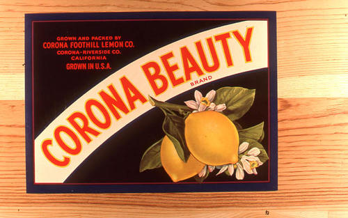 "This slide is of the ""Corona Beauty"" brand citrus label. Grown and Packed by Corona Foothill Lemon Company - Corona, California  SLIDE CONDITION:  Good."