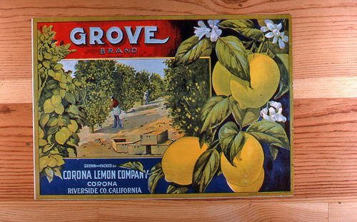"This slide is of the ""Grove"" brand.  This product was grown and packed by the Corona Lemon Company. - Corona, Riverside County, California. - SLIDE CONDITION:  Good."