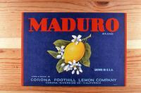 "Citrus label ""Maduro"" brand - Corona Foothill Lemon Company - Corona"