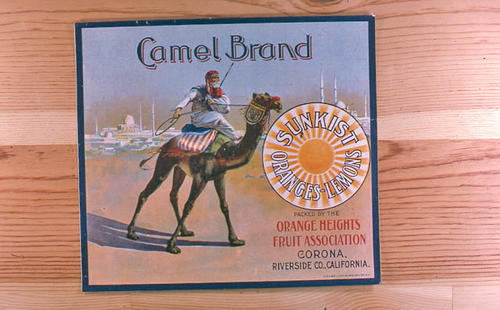 "This slide is of the ""Camel"" brand citrus label.  This product is packed by the Orange Heights Fruit Association. - Corona, Riverside County, California. - SLIDE CONDITION:  Good."