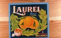 "Citrus label ""Laurel"" brand - Call Ranch - Corona"