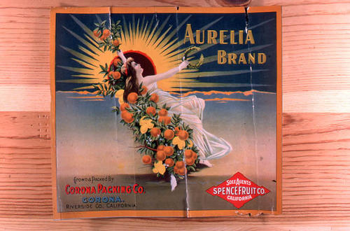"This slide is of the ""Aurelia"" brand citrus label. Grown and Packed by Corona Packing Co. - Corona - Riverside County, California. Sole agents for Spence Fruit Co. - California.  SLIDE CONDITION:  Good."