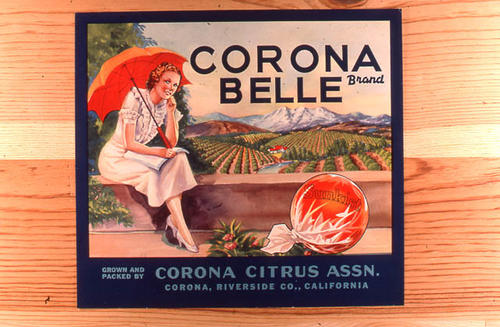 "This slide is of the ""Belle"" brand citrus label.  Part of the Corona Citrus Association.  SLIDE CONDITION:  Good."