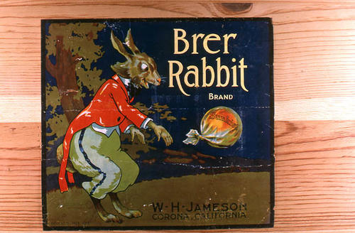 "This slide is of the ""Brer Rabbit"" brand citrus label. W. H. Jameson - Corona, California. SLIDE CONDITION:  Good."