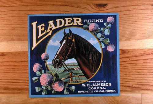 "This slide is of the ""Leader"" brand.  This citrus product was grown and packed by W. H. Jameson - Corona, Riverside County, California. - SLIDE CONDITION:  Good."
