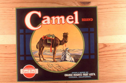 "This slide is of the ""Camel"" Red Ball brand citrus label. Grown and Packed by the Orange Heights Citrus Association - Corona (Riverside County), California.  SLIDE CONDITION:  Good."