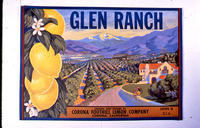 "Citrus label ""Glen Ranch"" brand - Corona Foothill Lemon Company - Corona"