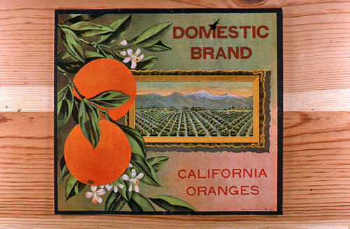 "This slide is of the ""Domestic"" brand.  There is no packing house listed on this label.  It only indicates California Oranges. - SLIDE CONDITION:  Good."