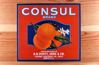 "Citrus label ""Consul"" brand - R. H. Verity, Sons and Co. - Corona"