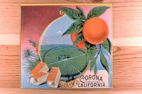 This slide is of a label that has no brand name.  The label indicates oranges - Corona, South Riverside, California.  It is identical to ART-0052, but without the company name.  ART-0052 is the Boston brand from South Riverside Fruit Company.  SLIDE CONDITION:  Good.