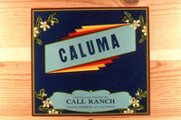 "Citrus label ""Caluma"" brand.  Call Ranch - Corona, California"