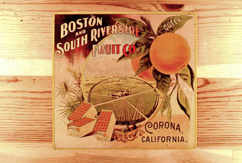 "This slide is of the ""Queen"" brand orange citrus label. South Riverside Fruit Co. Corona, California. The label design includes circular Grand Boulevard. SLIDE CONDITION:  Good."