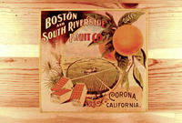 "Citrus label ""Queen"" brand - Boston and South Riverside Fruit Co. - Corona,..."