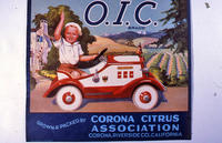 "Citrus label ""O.I.C."" brand - Corona Citrus Association - Corona"