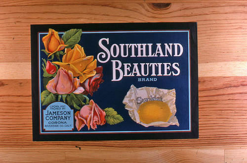 "This slide is of the ""Southland Beauties"" brand.  This product was grown and packed by the Jameson Company. - Corona, Riverside County, California. - SLIDE CONDITION:  Good."