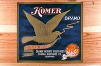 "Citrus label ""Homer"" brand - Orange Heights Fruit Ass'n. - Corona"