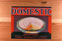 "Citrus label ""Domestic"" brand - Corona Foothill Lemon Company - Corona"