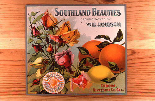 "This slide is of the ""Southland Beauties"" brand citrus label. Packed and grown by W. H. Jameson, Corona, California.  SLIDE CONDITION:  Good."