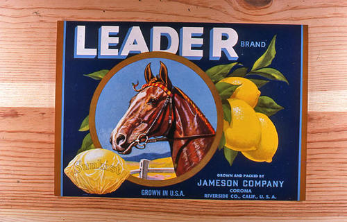 "This slide is of the ""Leader"" brand.  This Sunkist lemon product was grown and packed by Jameson Company - Corona, Riverside County, California. - SLIDE CONDITION:  Good."