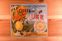 "Citrus label ""Queen Bee"" brand - Sunkist Lemons and Oranges - Queen Colony Fruit..."