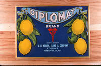 "Citrus label ""Diplomat"" brand - R. H. Verity, Sons and Company - Corona"
